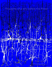 Thoughts of a City before the Flood