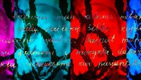Siberia Souls Letter 5