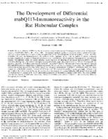 The development of differential mabQ113 immunoreactivity in the rat habenular complex during postnatal development