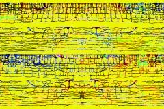 Neuronal Symphony