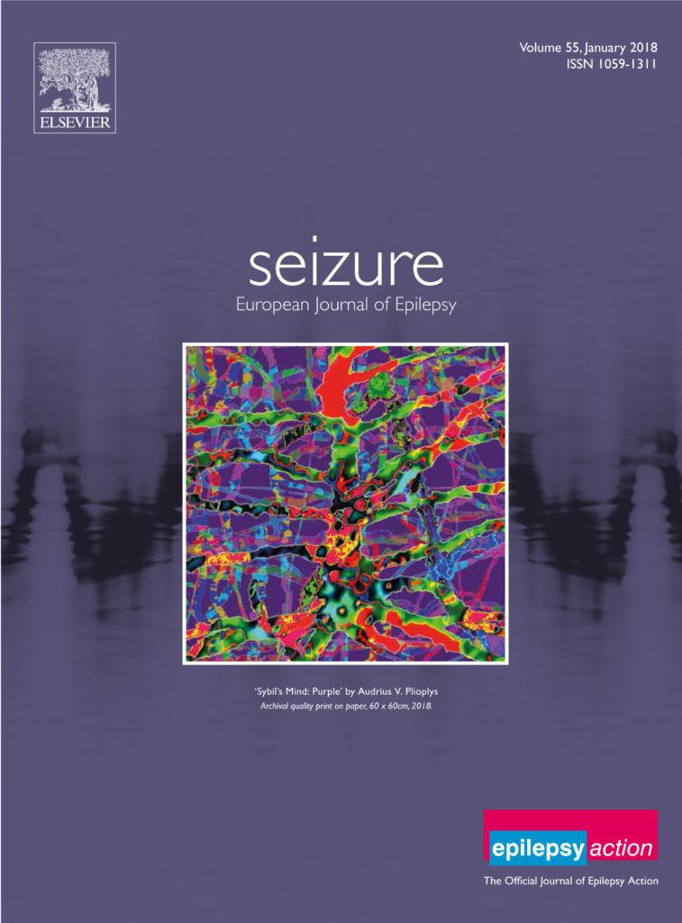 Seizure-front-cover-2018-757x1024.jpg